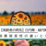 【高齢者の病気】白内障・緑内障・加齢黄斑変性の違いとは?
